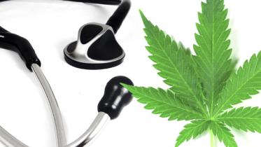 badania nad medyczna marihuana