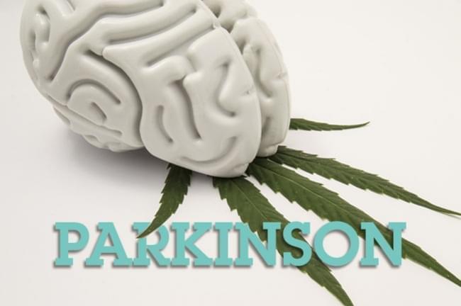 marihuana lecznicza na parkinsona