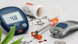 cbd na cukrzycę